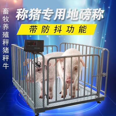 电子畜牧动物地磅秤如何进行日常维护与选购